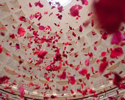 Lots of rose petals